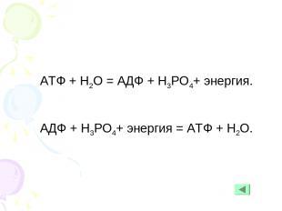 АТФ + Н2О = АДФ + Н3РО4+ энергия. АДФ + Н3РО4+ энергия = АТФ + Н2О.