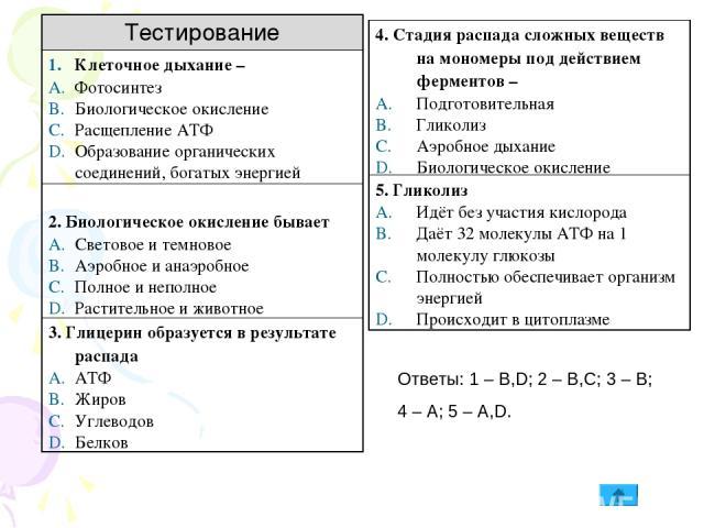Ответы: 1 – B,D; 2 – B,C; 3 – B; 4 – A; 5 – A,D. Тестирование Клеточное дыхание – Фотосинтез Биологическое окисление Расщепление АТФ Образование органических соединений, богатых энергией 2. Биологическое окисление бывает Световое и темновое Аэробное…