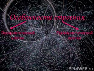 Особенности строения Эукариотической клетки Прокариотической клетки