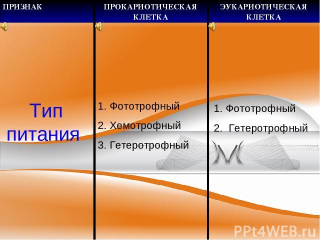 Тип питания Фототрофный 2. Хемотрофный 3. Гетеротрофный Фототрофный Гетеротрофный ПРИЗНАК ПРОКАРИОТИЧЕСКАЯ КЛЕТКА ЭУКАРИОТИЧЕСКАЯ КЛЕТКА