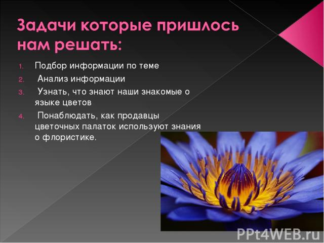 Подбор информации по теме Анализ информации Узнать, что знают наши знакомые о языке цветов Понаблюдать, как продавцы цветочных палаток используют знания о флористике.