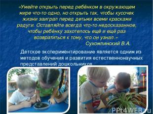 «Умейте открыть перед ребёнком в окружающем мире что-то одно, но открыть так, чт