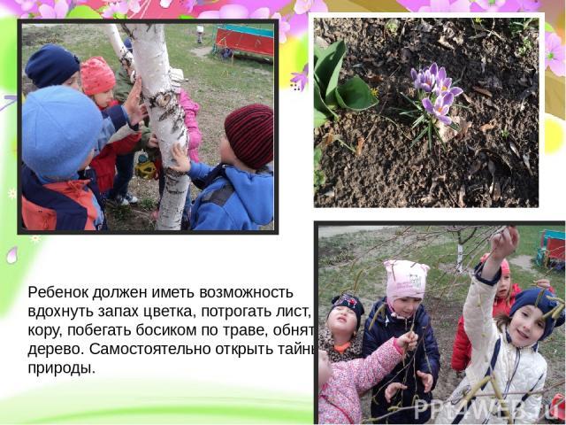 Проект «Земля – наш общий дом» - долгосрочный, групповой, исследовательско- творческий Ребенок должен иметь возможность вдохнуть запах цветка, потрогать лист, кору, побегать босиком по траве, обнять дерево. Самостоятельно открыть тайны природы.