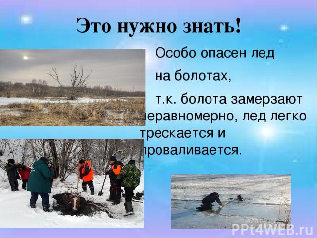 Это нужно знать! Особо опасен лед на болотах, т.к. болота замерзают неравномерно, лед легко трескается и проваливается.