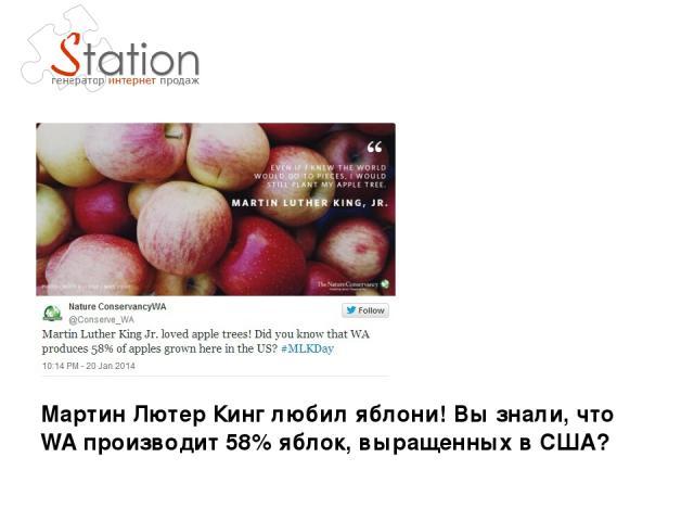 Мартин Лютер Кинг любил яблони! Вы знали, что WA производит 58% яблок, выращенных в США?