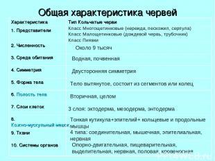 Общая характеристика червей Класс Многощетинковые (нереида, пескожил, серпула) К