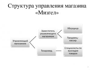 Структура управления магазина «Мизгел» *