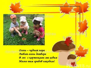Осень – чудная пора Любит осень детвора В лес с корзинками мы ходим Много там гр