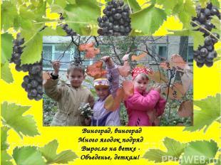 Виноград, виноград Много ягодок подряд Выросло на ветке - Объеденье, деткам!