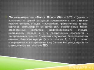 Печь-инсинератор «Веста Плюс» ПИр – 0,75 К (далее –установка) с ручной загрузкой