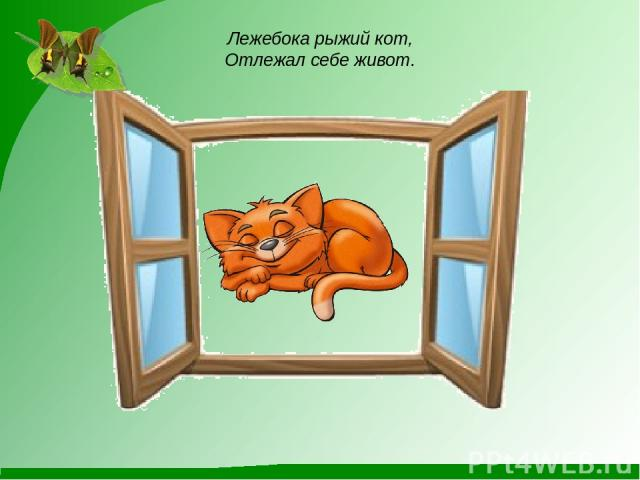 Лежебока рыжий кот, Отлежал себе живот.