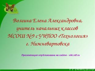 Волгина Елена Александровна, учитель начальных классов МСОШ № 9 с УИПОО «Техноло