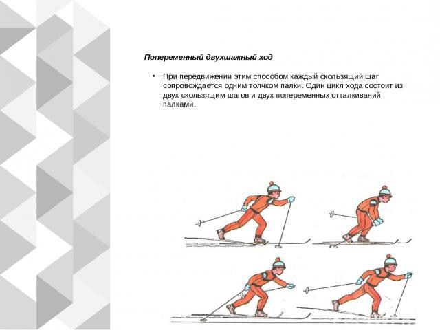 Попеременный двухшажный ход При передвижении этим способом каждый скользящий шаг сопровождается одним толчком палки. Один цикл хода состоит из двух скользящим шагов и двух попеременных отталкиваний палками.