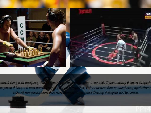 Шахматный бокс или шахбокс. Это не только игра мускул, но и мозгов. Противники в этом гибридном виде спорта играют в бокс и в шахматы в чередующихся раундах. Официально бои по шахбоксу проводятся с 2003 года. В полутяжёлом весе чемпионом мира стал Д…