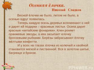 Осенняя ёлочка. Николай Сладков Весной ёлочки не было, летом не было, а осенью в