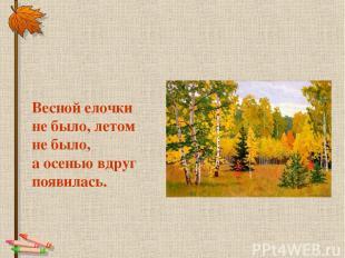 Весной елочки не было, летом не было, а осенью вдруг появилась.