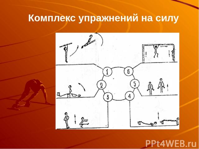 Комплекс упражнений на силу
