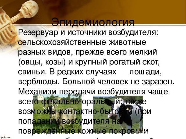 Эпидемиология Резервуар и источники возбудителя: сельскохозяйственные животные разных видов, прежде всего мелкий (овцы, козы) и крупный рогатый скот, свиньи. В редких случаях ― лошади, верблюды. Больной человек не заразен. Механизм передачи возбудит…