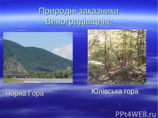 Природні заказники Виноградівщини Чорна Гора Юлівська гора