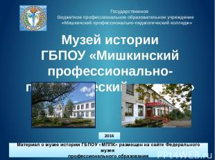 Государственное бюджетное профессиональное образовательное учреждение «Мишкински
