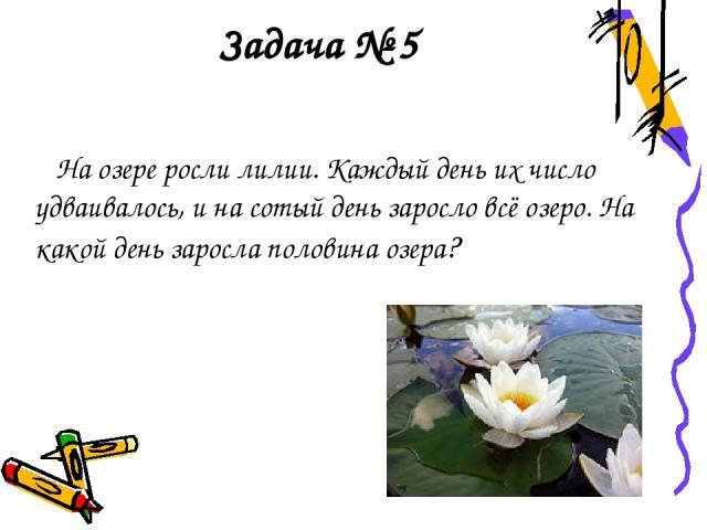 Задача № 5 На озере росли лилии. Каждый день их число удваивалось, и на сотый день заросло всё озеро. На какой день заросла половина озера?