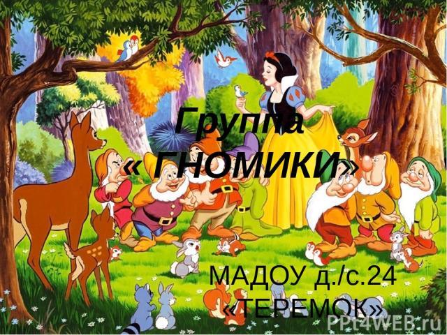 Группа « ГНОМИКИ» МАДОУ д./с.24 «ТЕРЕМОК»