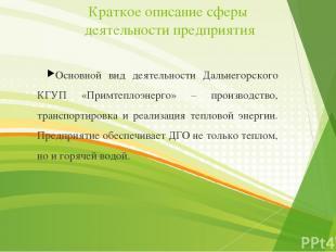 Краткое описание сферы деятельности предприятия Основной вид деятельности Дальне