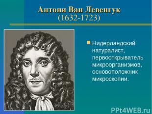 Антони Ван Левенгук (1632-1723) Нидерландский натуралист, первооткрыватель микро