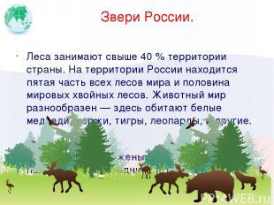 Звери России. Леса занимают свыше 40 % территории страны. На территории России н