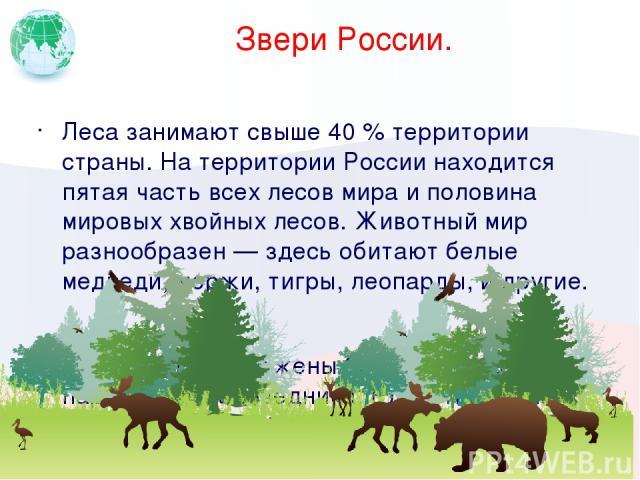 Звери России. Леса занимают свыше 40 % территории страны. На территории России находится пятая часть всех лесов мира и половина мировых хвойных лесов. Животный мир разнообразен — здесь обитают белые медведи, моржи, тигры, леопарды, и другие. В Росси…