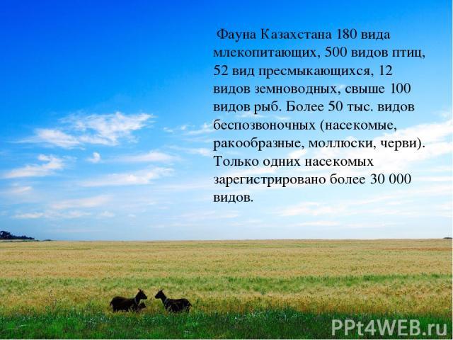 Фауна Казахстана 180 вида млекопитающих, 500 видов птиц, 52 вид пресмыкающихся, 12 видов земноводных, свыше 100 видов рыб. Более 50 тыс. видов беспозвоночных (насекомые, ракообразные, моллюски, черви). Только одних насекомых зарегистрировано более …
