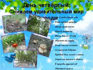 День четвёртый: Снимаем удивительный мир природы Нас в любое время года Учит муд