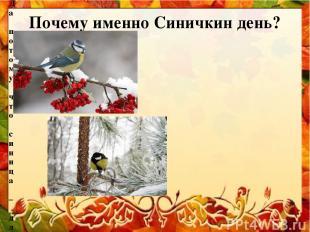 Почему именно Синичкин день? Да потому что синица – для Руси божья птица. Раньше