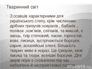 Зссавцівхарактерними для українського степу, крім численних дрібних гризунів:х