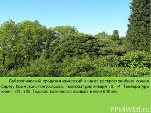 Субтропический средиземноморский климат распространённа южном берегу Крымского п
