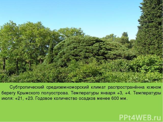 Субтропический средиземноморский климат распространённа южном берегу Крымского полуострова. Температуры января +3, +4. Температуры июля: +21, +23. Годовое количество осадков менее 600 мм.