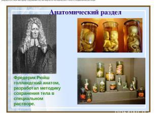 Анатомический раздел Фредерик Рюйш голландскийанатом, разработал методику сохра
