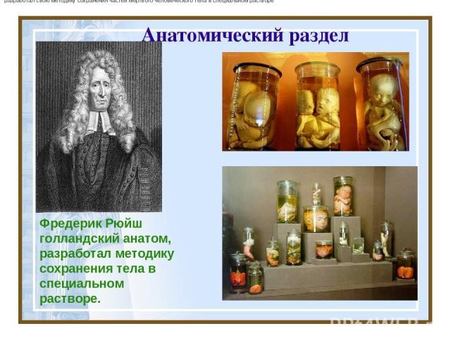 Анатомический раздел Фредерик Рюйш голландскийанатом, разработал методику сохранения тела в специальном растворе. разработал свою методику сохранения частеймертвого человеческого тела в специальном растворе