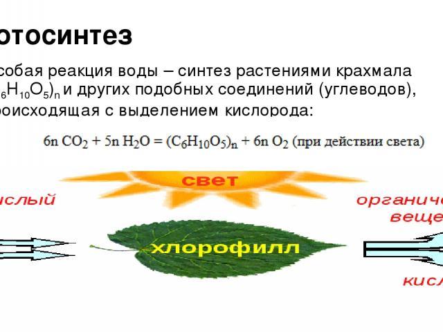 Фотосинтез Особая реакция воды – синтез растениями крахмала (C6H10O5)n и других подобных соединений (углеводов), происходящая с выделением кислорода: