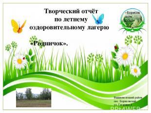 «Борисовская СОШ» Творческий отчёт по летнему оздоровительному лагерю «Родничок»