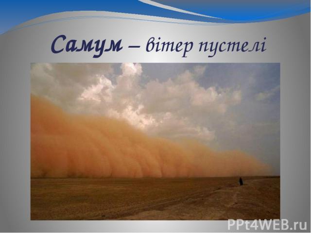 Самум – вітер пустелі