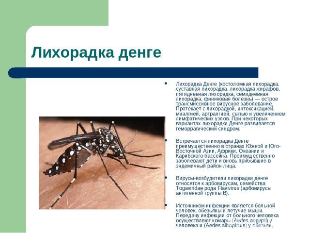 Лихорадка денге Лихорадка Денге (костоломная лихорадка, суставная лихорадка, лихорадка жирафов, пятидневная лихорадка, семидневная лихорадка, финиковая болезнь) — острое трансмиссивное вирусное заболевание. Протекает с лихорадкой, интоксикацией, миа…