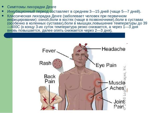 Симптомы лихорадки Денге Инкубационный период составляет в среднем 3—15 дней (чаще 5—7 дней). Классическая лихорадка Денге (заболевает человек при первичном инфицировании) :озноб,боли в костях (чаще в позвоночнике),боли в суставах (особенно в коленн…