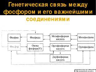 Генетическая связь между фосфором и его важнейшими соединениями http://prezentaz