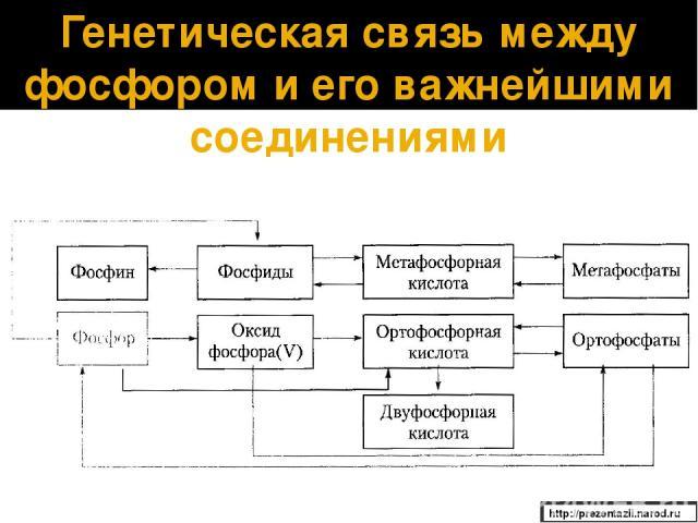 Генетическая связь между фосфором и его важнейшими соединениями http://prezentazii.narod.ru