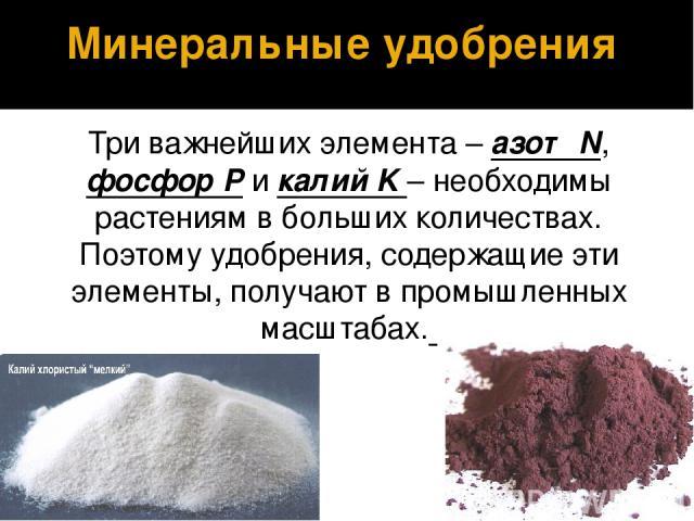 Три важнейших элемента – азот N, фосфор P и калий K – необходимы растениям в больших количествах. Поэтому удобрения, содержащие эти элементы, получают в промышленных масштабах. Минеральные удобрения