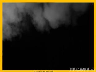 """Сковородко Е.В. МБОУ """"Синеколодецкая начальная школа-детский сад"""""""