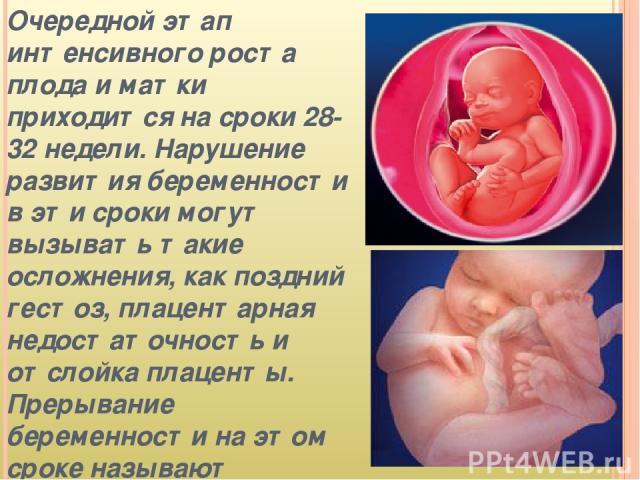 Очередной этап интенсивного роста плода и матки приходится на сроки 28-32 недели. Нарушение развития беременности в эти сроки могут вызывать такие осложнения, как поздний гестоз, плацентарная недостаточность и отслойка плаценты. Прерывание беременно…