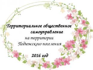 Территориальное общественное самоуправление на территории Подюжского поселения 2