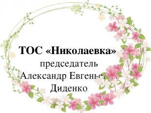 ТОС «Николаевка», председатель Александр Евгеньевич Диденко